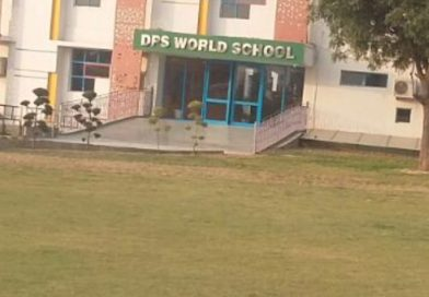 DPS World school asked to rename itself by High court