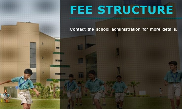 school fees not available online
